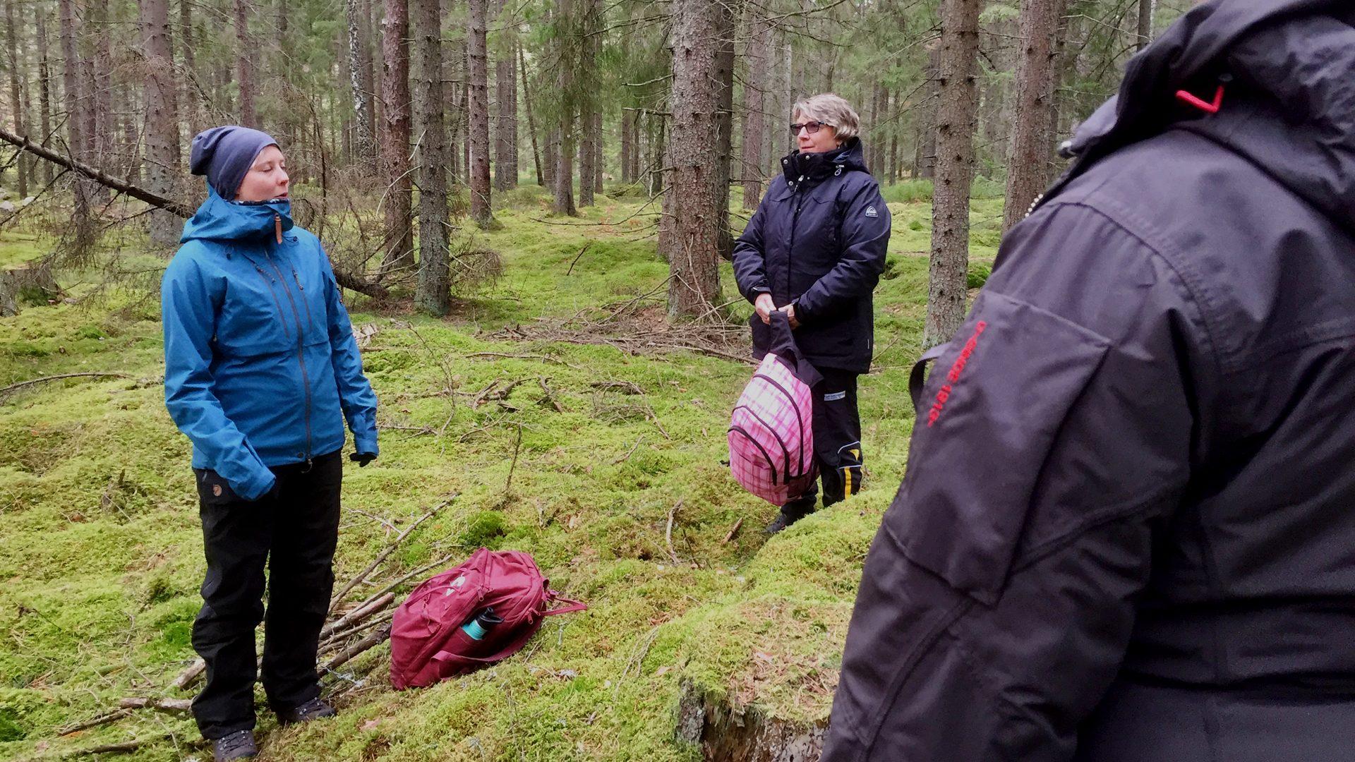 Bli friskvårdsguide i Tyrestaskogen.