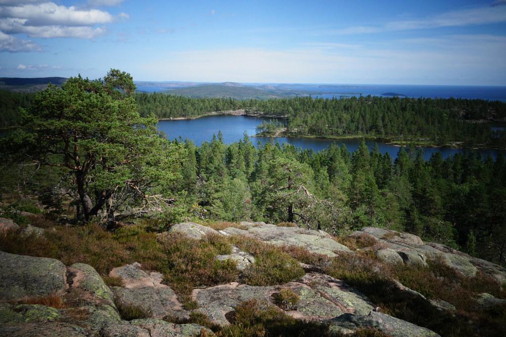 Dejt Aktiviteter I Västernorrland : Almundsryd dejting : Klassjoggen